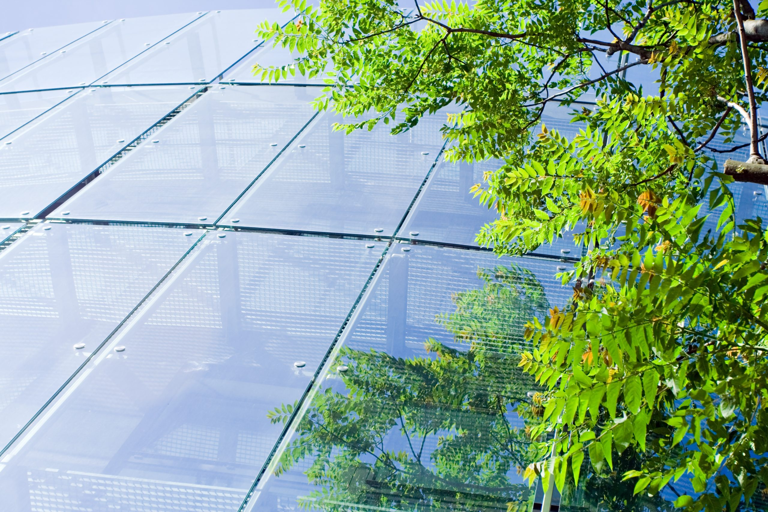 Ways for your business to go green